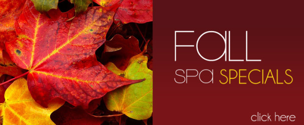 fall spa specials new york city ny